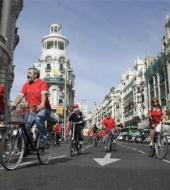 Antwerp Highlights Bike Tour