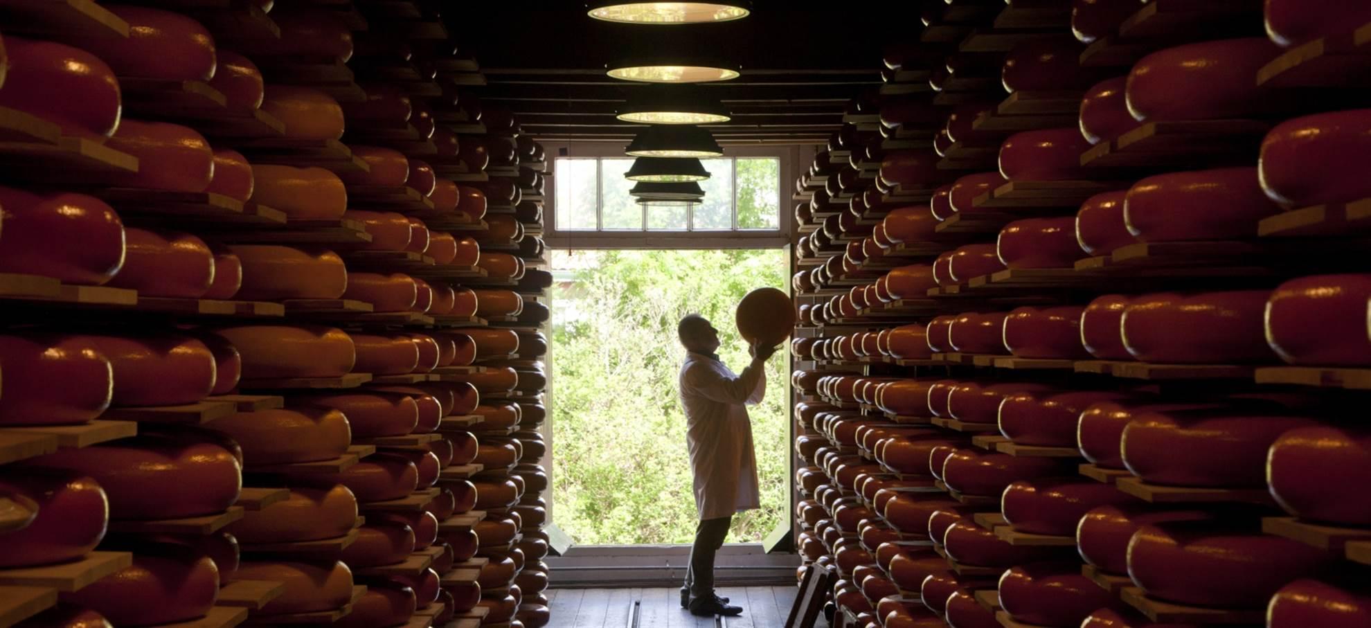 Visite et dégustation de fromage Reypenaer
