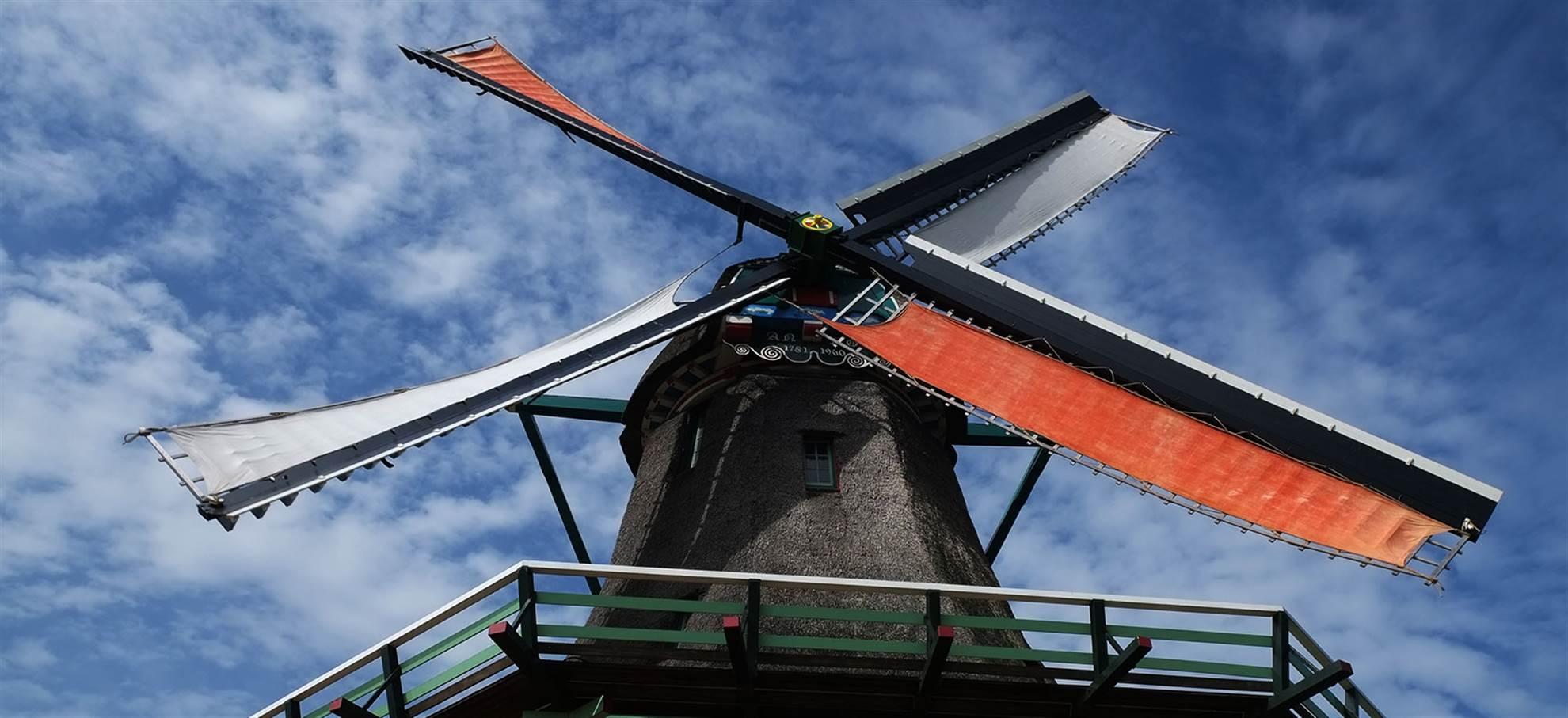 Alkmaar, Käse und Windmühlen