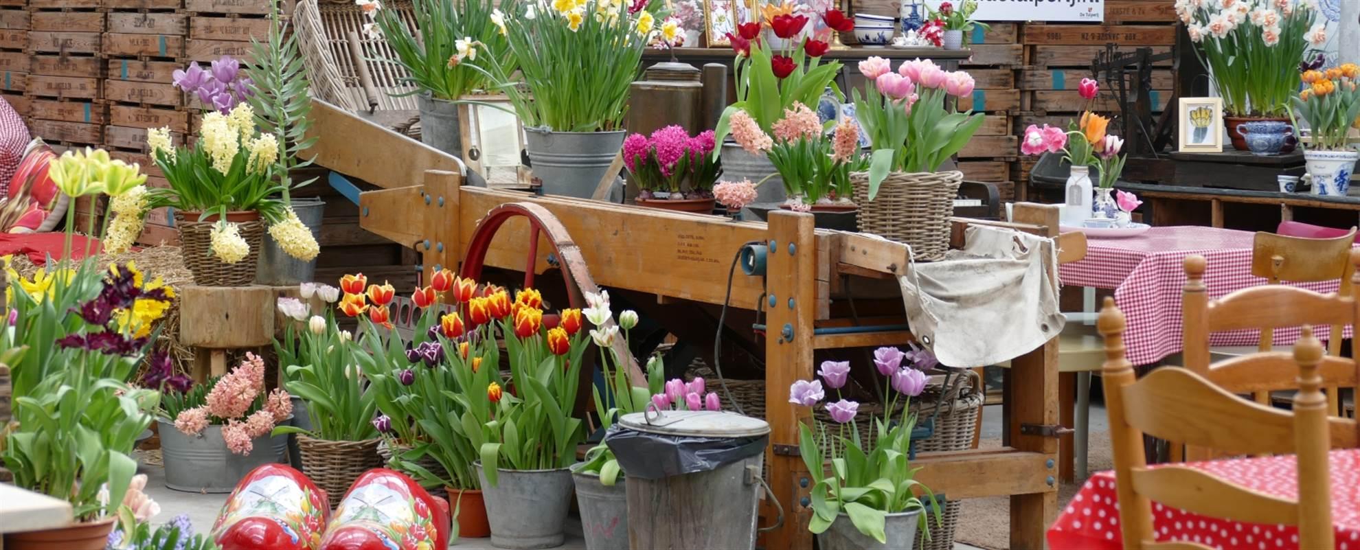 De Keukenhof en de bloemenvelden inclusief een bezoek aan de bollenboerderij ( Boekbar)