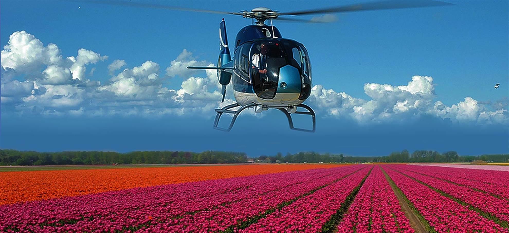 Hubschrauberflug über die Tulpenfelder