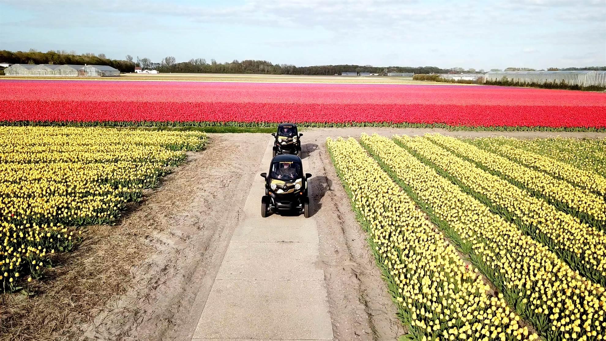 Les champs de tulipes en véhicule électrique