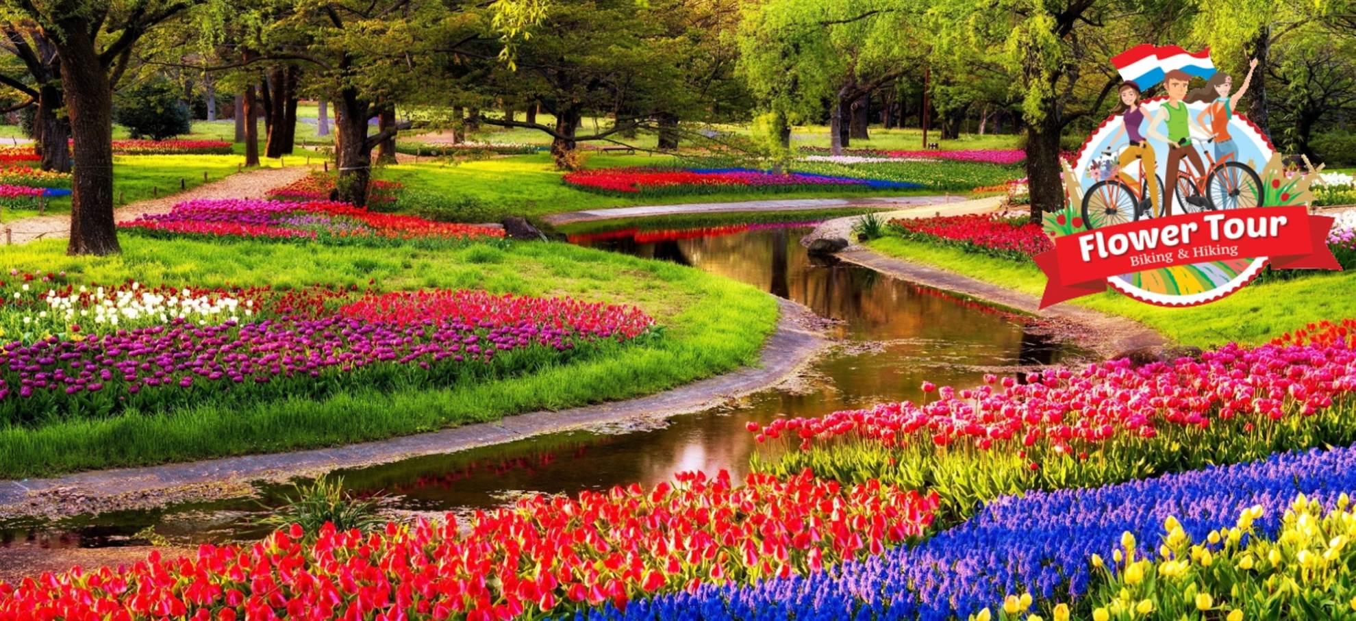 De Tulpenroute: fietsen en wandelen langs de bloemenvelden