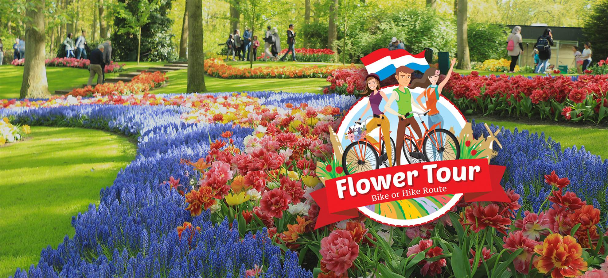The Flower Tour: biking or hiking along the tulip fields