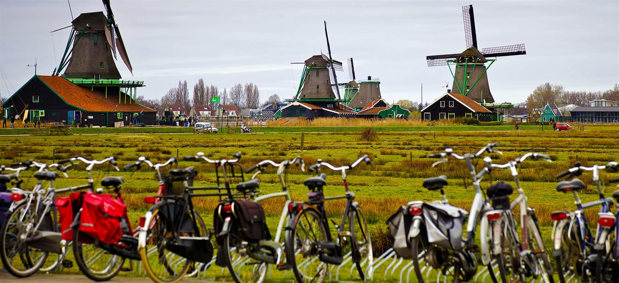 Tour de bicicleta no campo