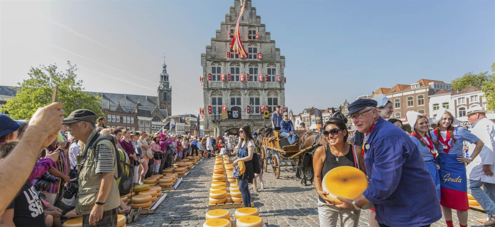 Alkmaar - half day cheese market tour