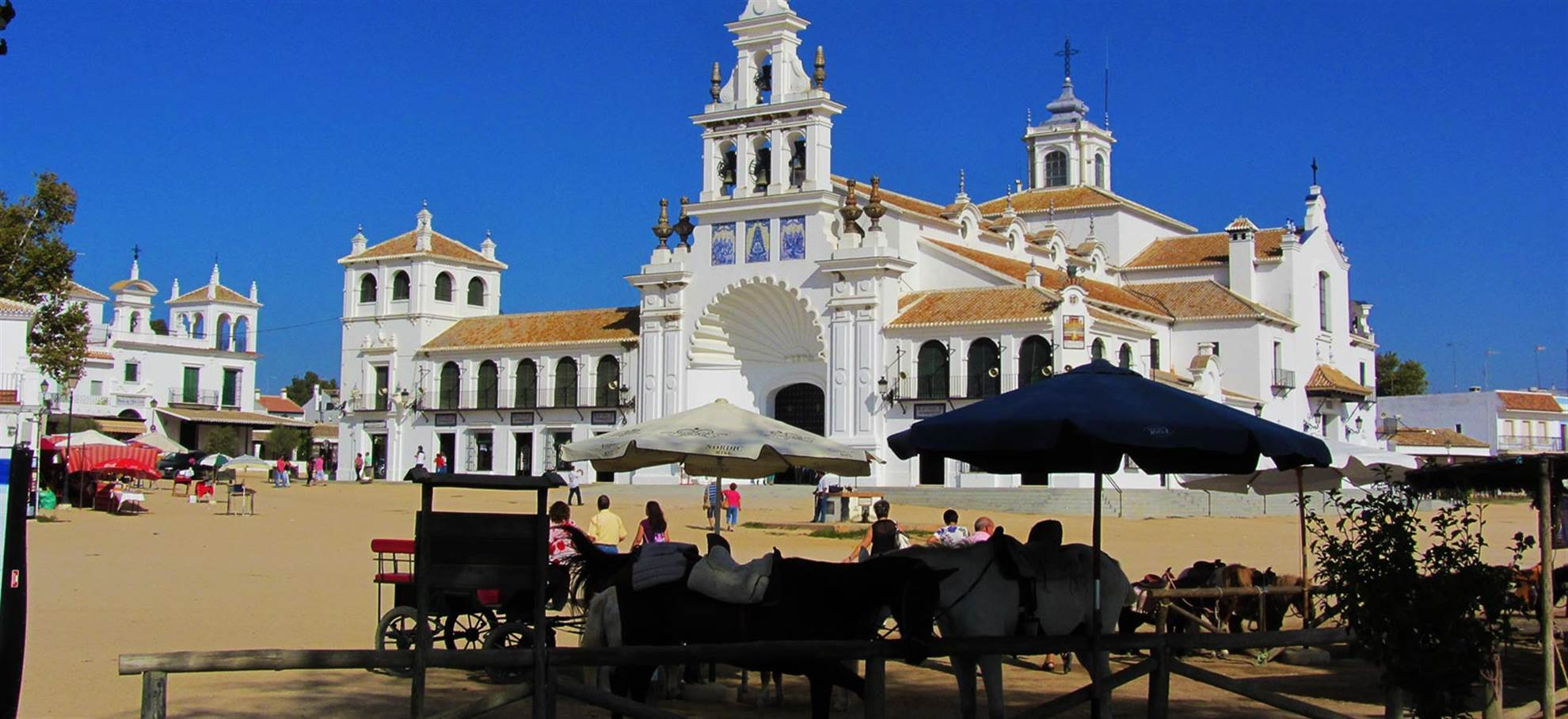 Doñana von Sevilla – Ganztags (SVQDONAN)