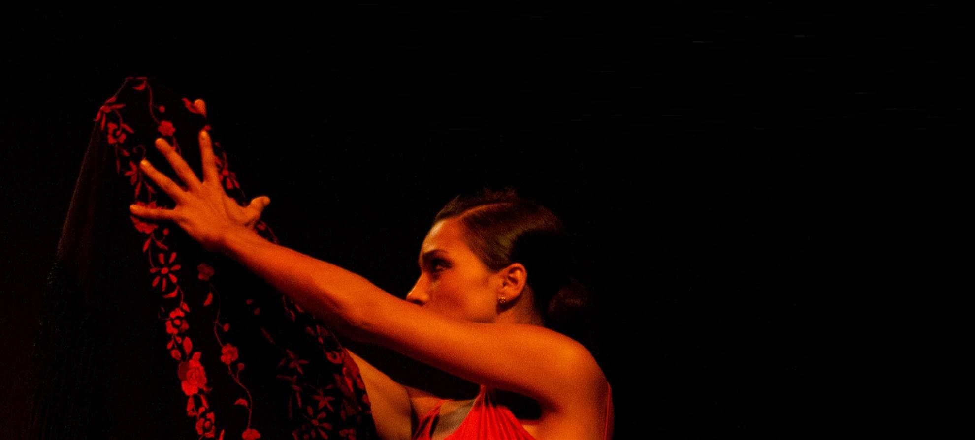 Tapas & Flamenco Tour