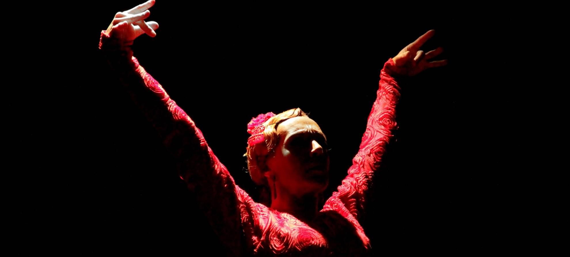 Spettacolo di flamenco al Palacio del Flamenco