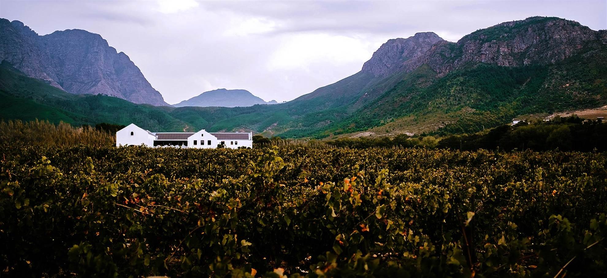 Tours : Stellenbosch et Franschhoek