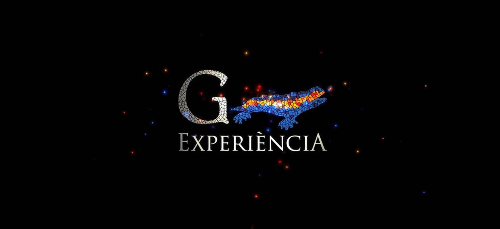 Gaudi Experiencia