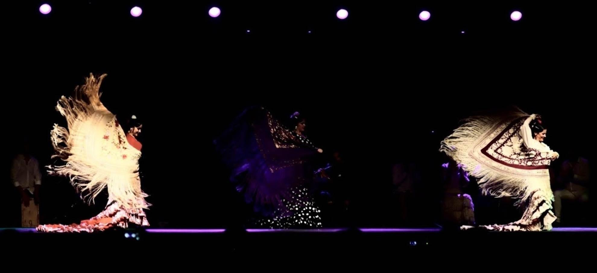 Noche flamenco