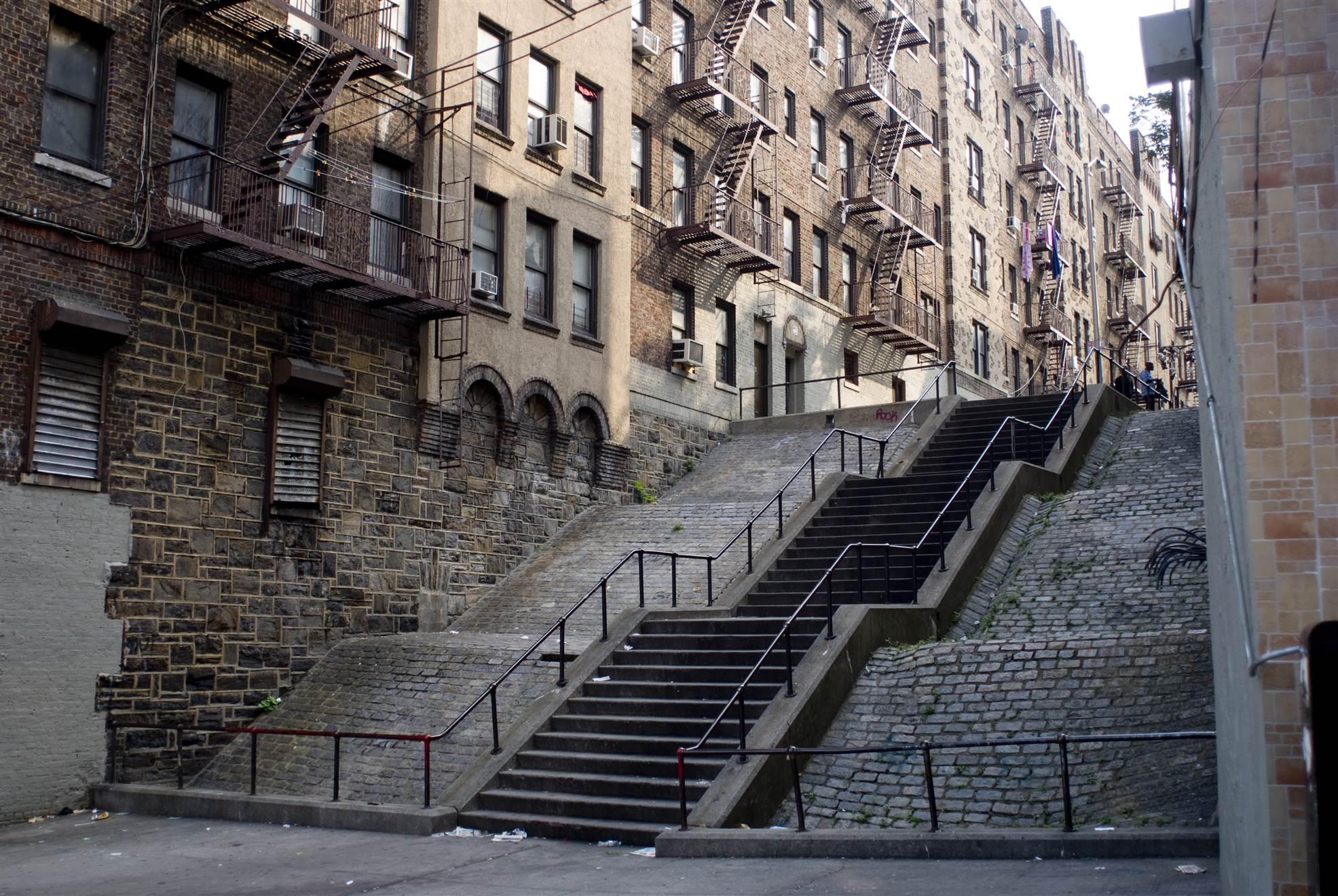 Bronx Tour