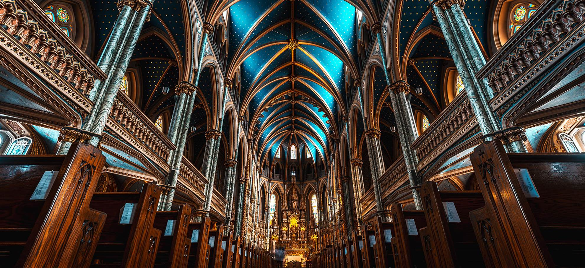 在语音向导下参观巴黎圣母院,优先通道门票 (Notre Dame)