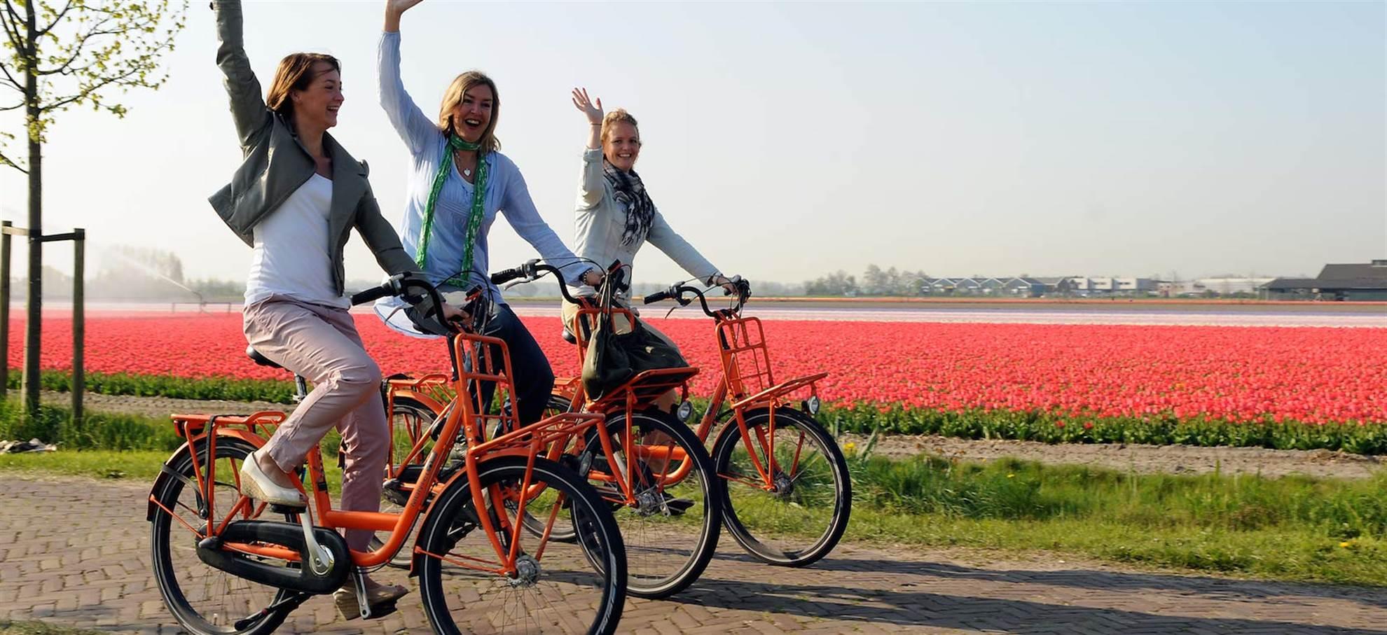 Lisse (Keukenhof) Bike Rental +  Flowerfield Audioguide