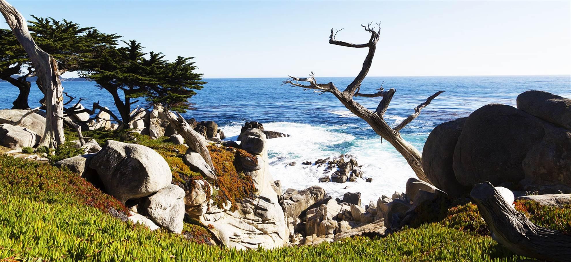 Monterey & Carmel Tour