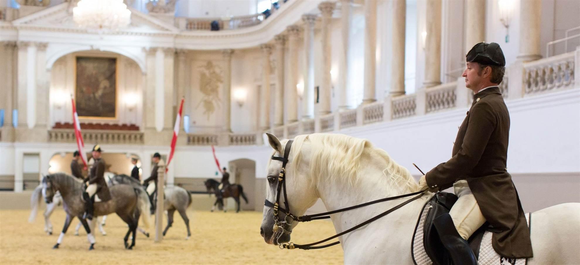Spanish Riding School - MORNING EXERCISE