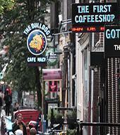 Amsterdam Coffeeshop Crawl
