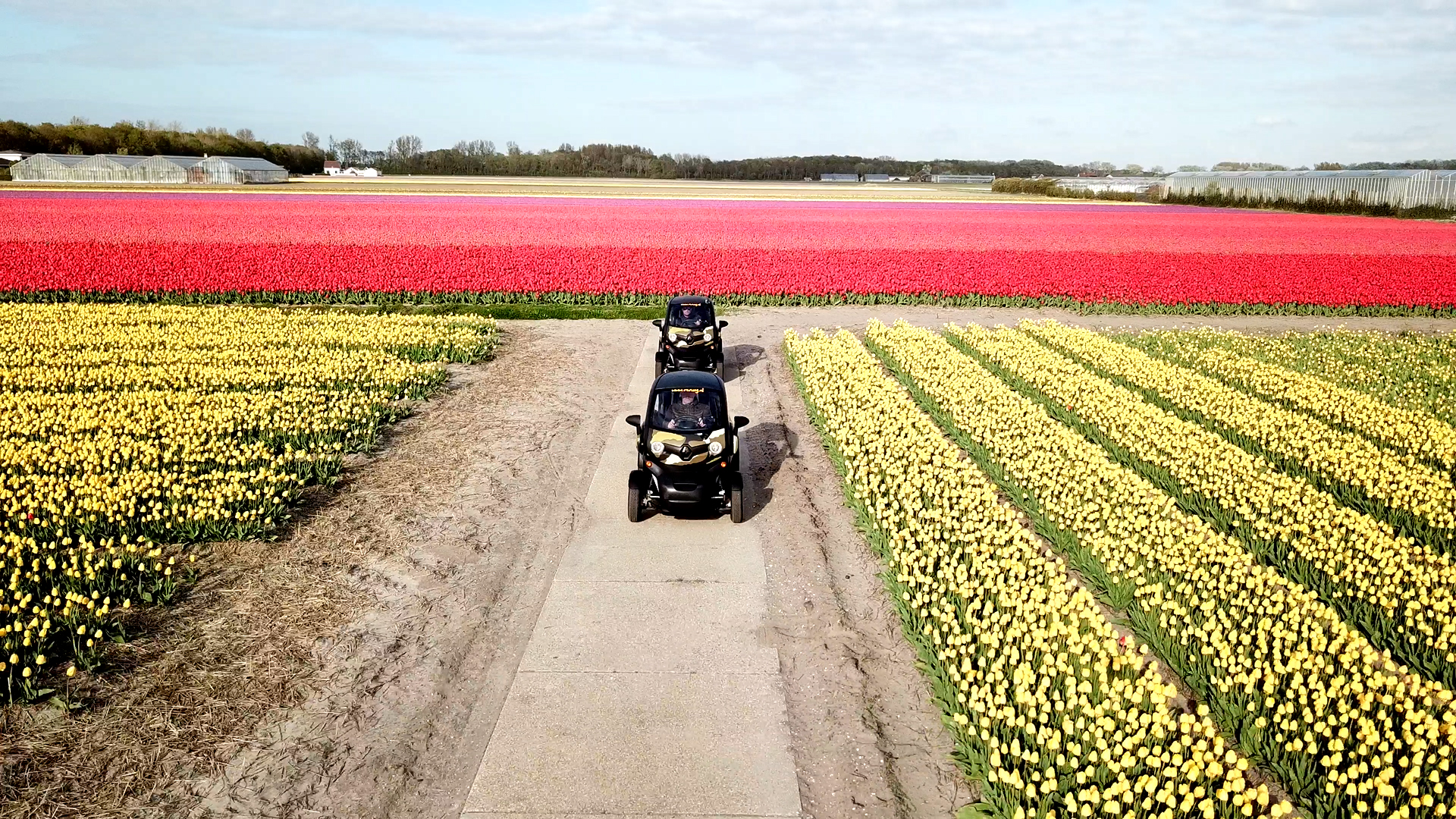 Flowerfield Experience with Electric Vehicle (GPS and Audioguide included)