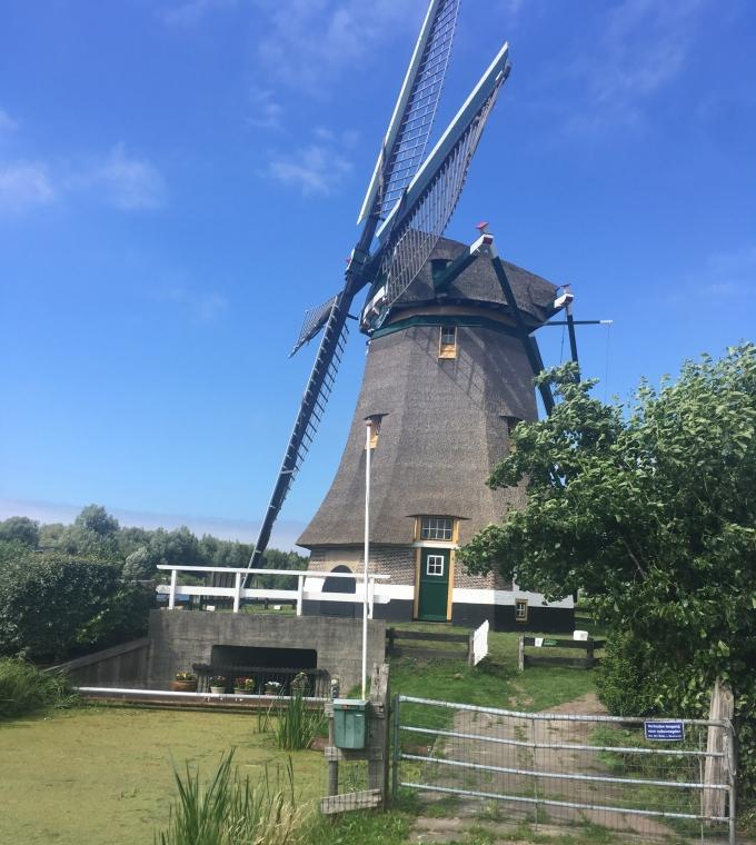 Dutch countryside bike tour: 'polder', windmills, lakes & cheese  - NOT ACTIVE