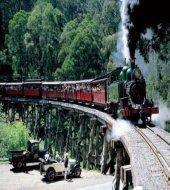 Morning Puffing Billy Steam Train Tour