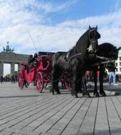 Romantic Berlin - Carriage Ride