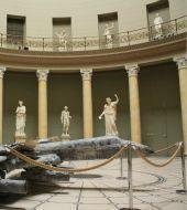 Museu Altes
