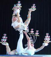Peking Roast Duck and Acrobatic Show