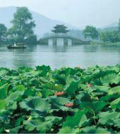 Hang Zhou, Heaven On the Earth