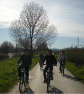 Electric Bike Tour of Florence and its Hills