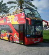 Las Palmas Hop-on Hop-off Bus