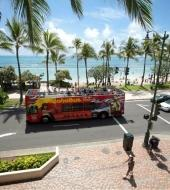 Hawaii Hop on Hop off Bus
