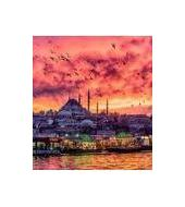 Bosporus Dinner Cruise
