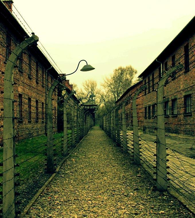Auschwitz & Birkenau Memorial: Individual Visit - Train Tickets and Fast Track Tickets