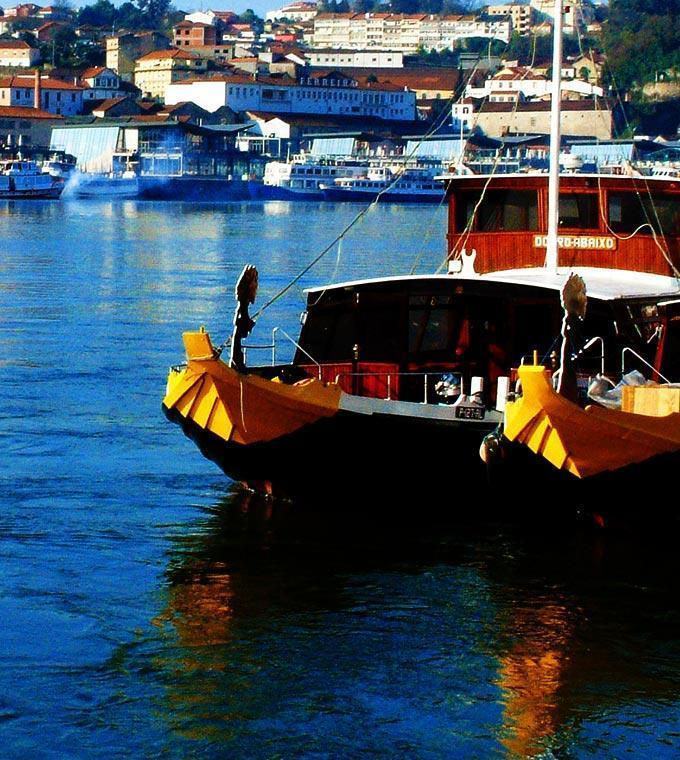 Yellow City Cruises