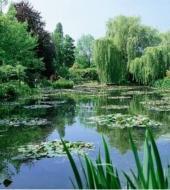 Um dia Monet : museu Orangerie e Giverny