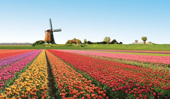 Afbeelding van Grand Holland Tour