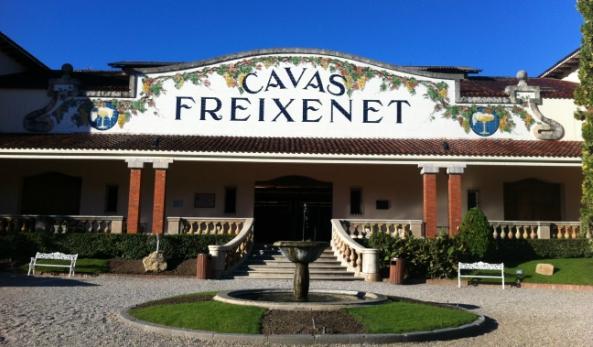 Afbeelding van Wijn & Cava Tour