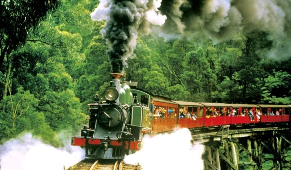 Afbeelding van Puffing Billy Steam Train Tour