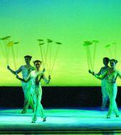 Chinese Acrobatics Private Tour
