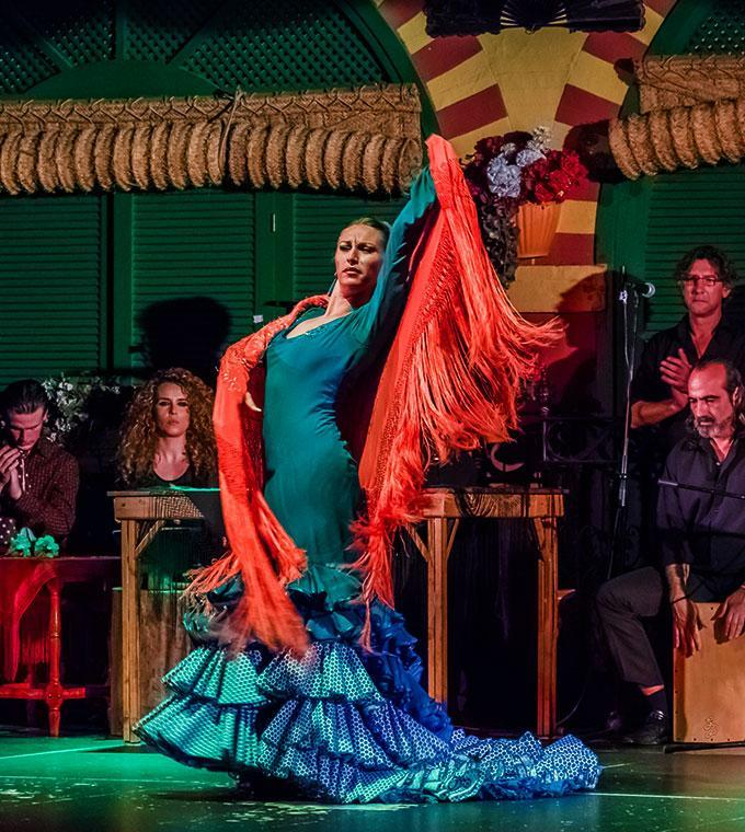 Flamenco Show Special (including guide and visit to Flamenco Show)
