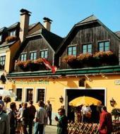 Serenata en una taberna de Viena